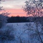Winter in Vologda by Olga Tolsikova